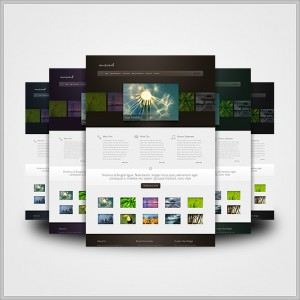 Elegant Themes WordPress Example